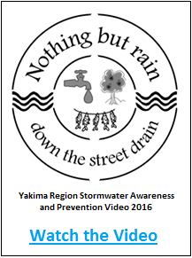 Stormwater Video